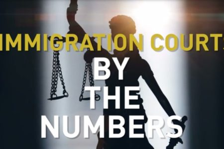 IMMIGRATION  Crisis in the Courts