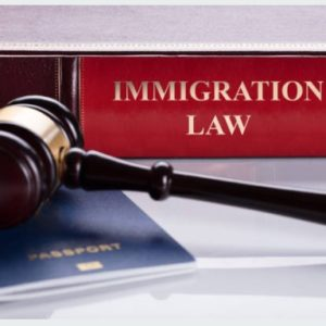 Early Arrival: City Files Lawsuit Against Immigration Legal Service Provider