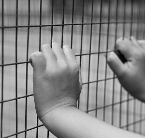 N.Y. Immigration Advocate Slams New Trump Administration Ruling on Indefinite Child Detention